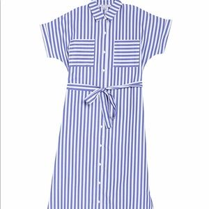 Stripe Print Shirt Dress - Like New